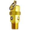 ASME Safety Valve
