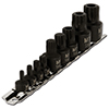 Star Bit Socket 12 Point Set