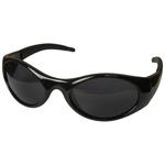 Stingers(TM) Safety Glasses