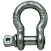 Forged Screw Pin Anchor Shackles
